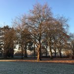 A beautiful winters walk to school this morning