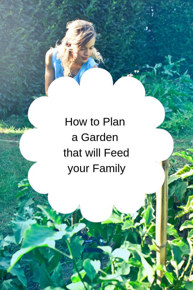 How to Plan a Garden that will Feed your Family